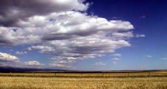 The Interior Plains Vegetation Interior Plains The Physical Regions Of North America