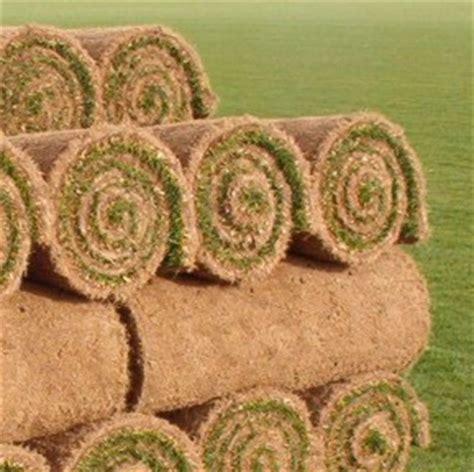 tappeto erba vera prato a rotoli listino prezzi erba vera di ottima