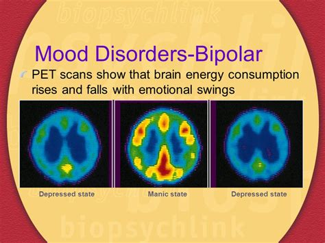 drugs and mood swings the drug revolution for mental health ppt video online