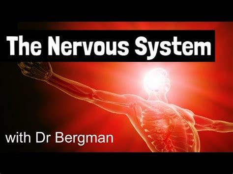 nervous ills their cause and cure classic reprint books best 10 nerve problems ideas on nerves of the