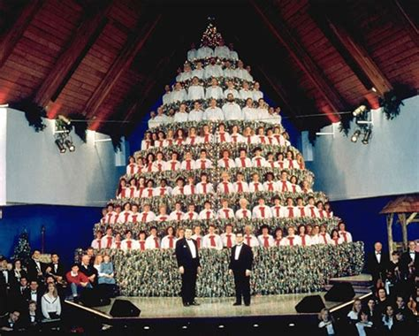 top 10 most unusual christmas trees of 2011