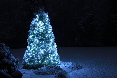 tips for getting your christmas tree lights to sparkle