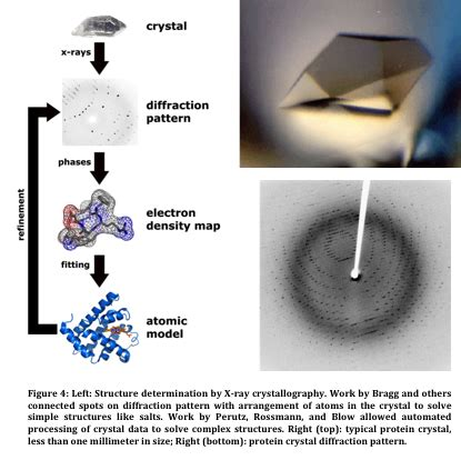 protein x crystallography scicurious guest writer x crystallography 100 years