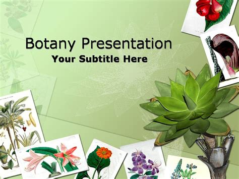 Botany Nature Flower Templates For Powerpoint Botany Ppt Templates Free