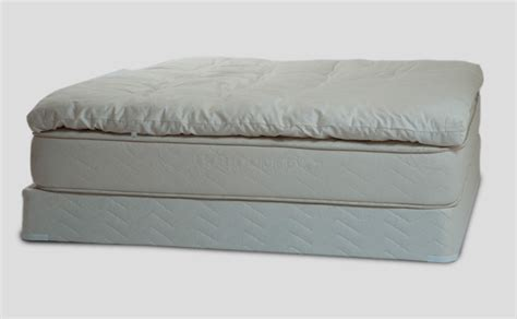 Best Organic Pillow by And Organic Pillowtop Healthy Choice
