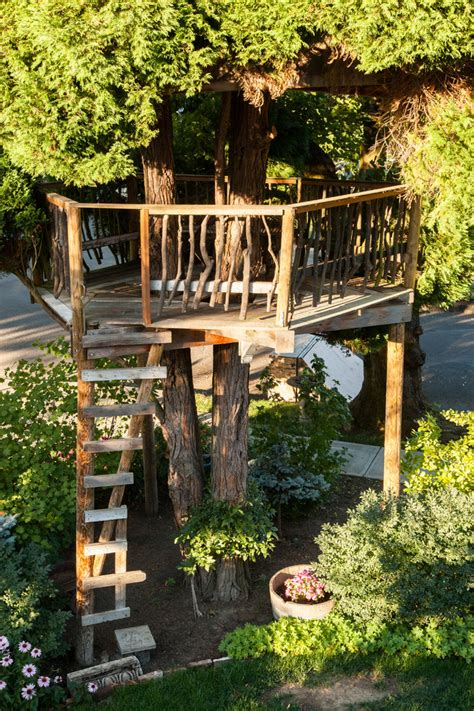 tree house ladder design tree house ladder design house design
