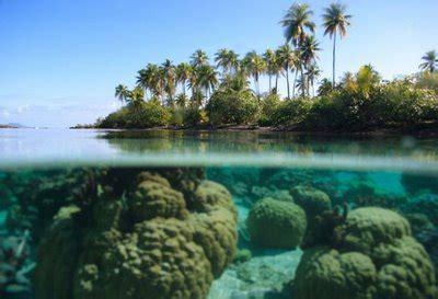 wallpaper wallpaper gambar pemandangan dasar laut