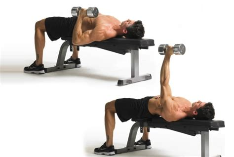 benching with dumbbells bench pressing with dumbbells 28 images burn fats in