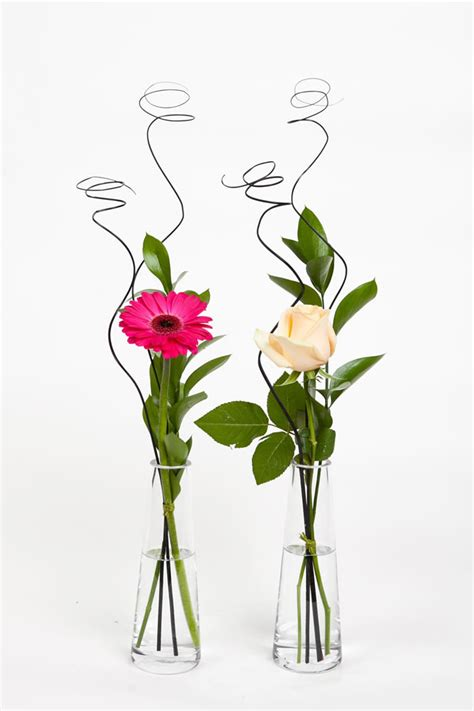 Single Flower Vase by Single Flower In Glass Vase Hornby Florist