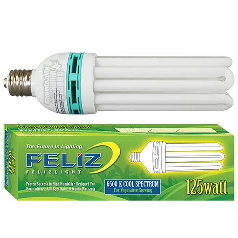 blue fluorescent light bulbs feliz 125 watt blue 6500k compact fluorescent grow l
