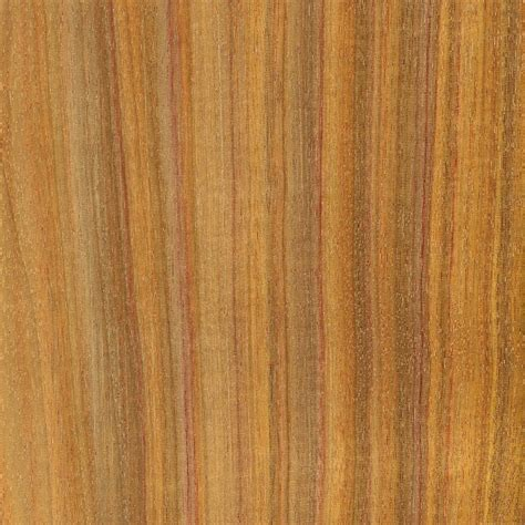 Exotic Wood Kitchen Cabinets by Exotic Lumber American Cabinet Doors