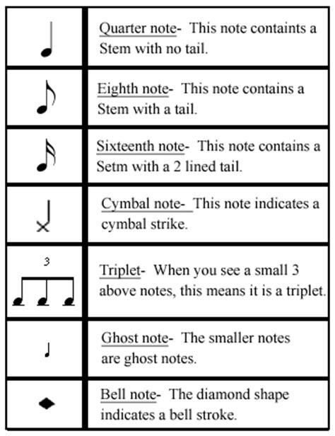 snare drum diagram piano diagram ~ elsavadorla