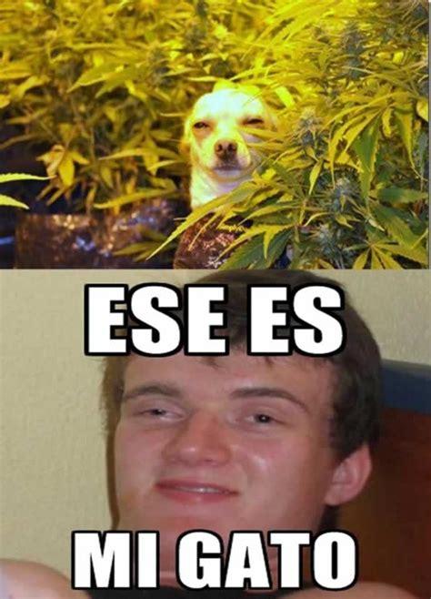 Meme Droga - chico drogado stoner stanley meme marcianos
