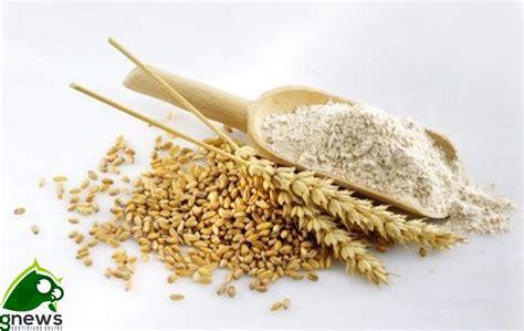 glutine negli alimenti una nuova tecnica per trovare il glutine negli alimenti