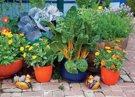 Best Flowers For Vegetable Garden Wise Pairings Best Flowers To Plant With Vegetables