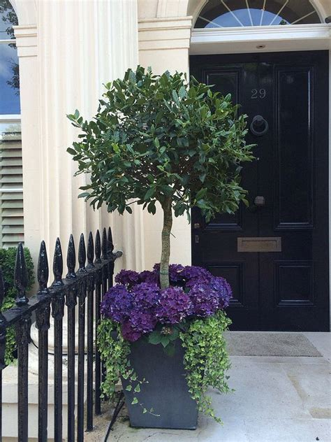 Front Entrance Planters by 40 Front Door Flower Pots For A Impression