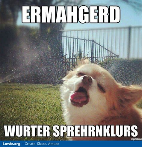 Dog Sprinkler Meme - a chat page i guess page 14