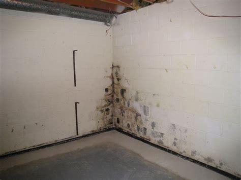 isolamento umidit 224 di risalita pareti