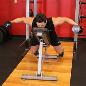 back raise bench seated bent over rear delt raise exercise guide and video