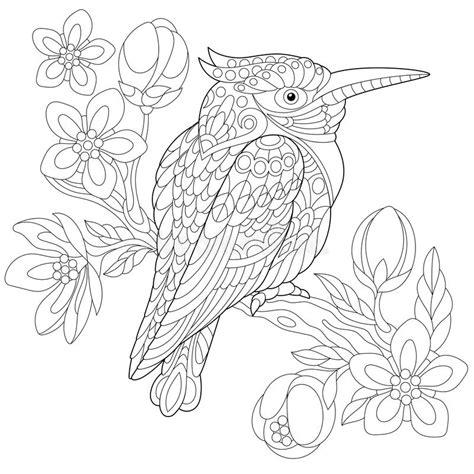 anti stress coloring book australia zentangle stylized kookaburra bird stock vector image