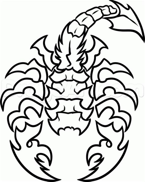 how to draw a scorpion tattoo step by step tattoos pop