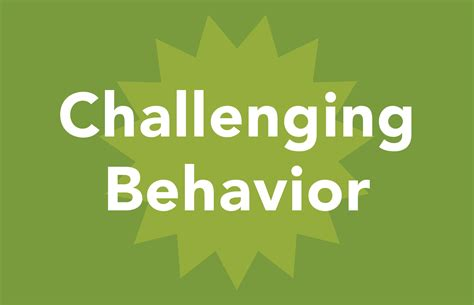 strategies for dealing with challenging behaviour ohio center for autism and low incidence learn