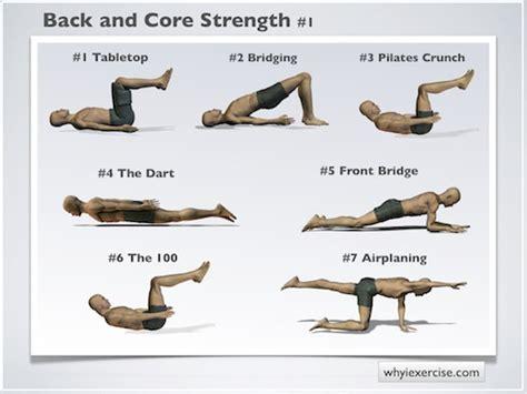 strengthening exercises illustrated  unique lifelike