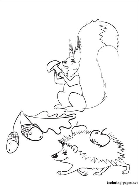 autumn animals coloring page coloring page with animals in the autumn coloring pages