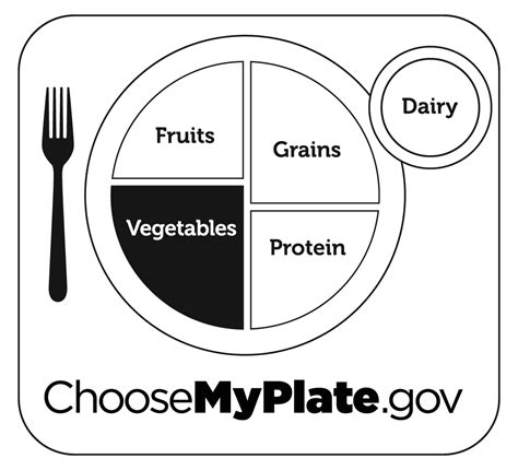 my plate template healthy food plate coloring page sketch coloring page