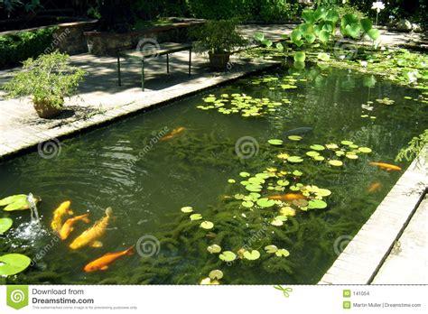 Koi Garten 02 Stockbilder Bild 141054