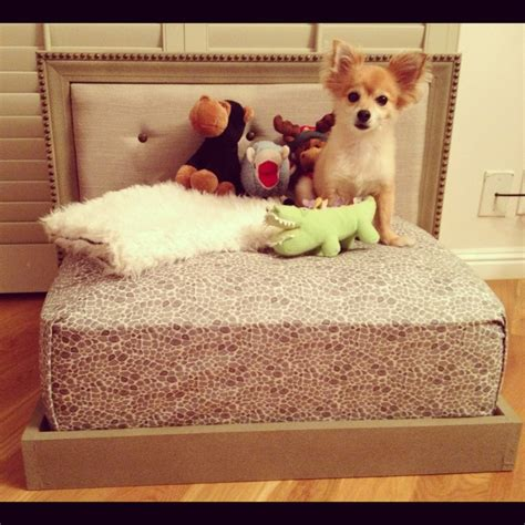 self made headboards 17 best images about four paws on pinterest dog beds