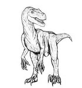 coloriages 224 imprimer animaux dinosaures 233 lociraptor 1