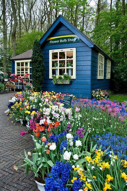 garden of flower shop garden shed garden flower shops garden