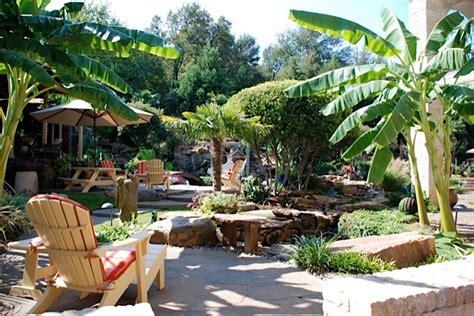 Concept Design For Tropical Garden Ideas Tropical Garden Oasis Tropical Patio Dallas By Original Landscape Concepts Inc