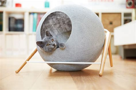 refined and elegant furniture for cats home design