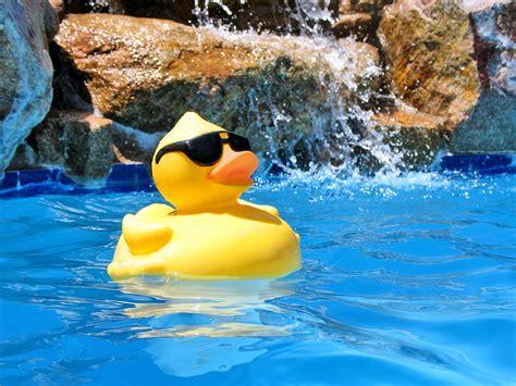 pool at pool party merrigum active in parks