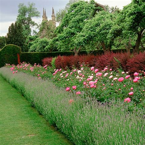 Border Garden Ideas Depth Herbaceous Borders Classic Garden Ideas