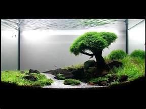 top 10 and scenic home aquariums fish tanks