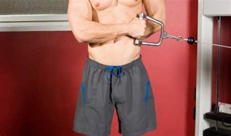 external cable rotation bodybuilding wizard