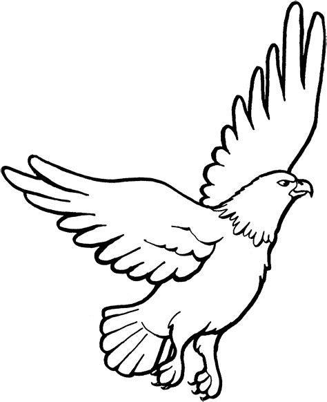 Eagle Color Page free eagle coloring pages