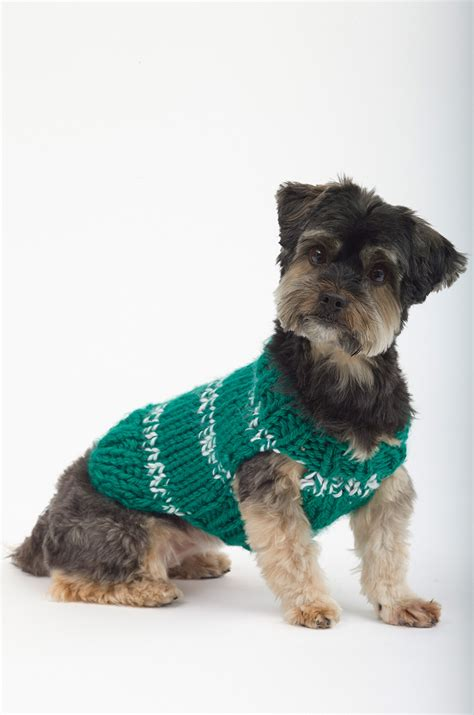 free download pattern for dog coat top 5 free dog sweater knitting patterns loveknitting blog