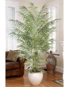 Artificial Trees Home Decor by Decorate With 6 5 Butterfly Silk Palm Tree At Petals