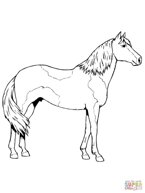 clydesdale paint horses coloring pages coloring pages