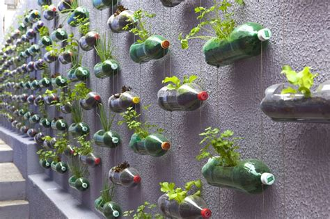 urban vertical garden built from hundreds of recycled soda