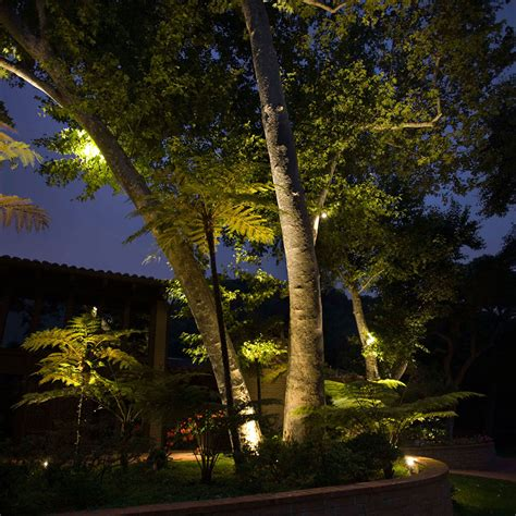 Landscape Lighting In Trees Keep Your Home Safe Beautiful Basics Of Oahu Landscape Lighting Total Landscape Management
