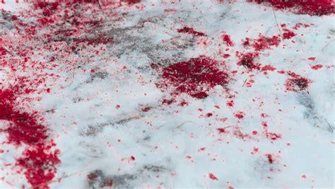 blood on snow blood splatter video stock footage