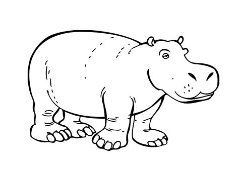 hippo coloring page printable hippo coloring pages coloring me