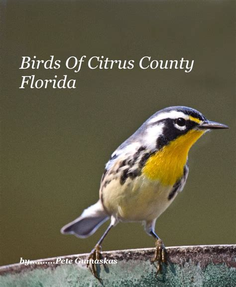 Home Design Magazines Pdf Birds Of Citrus County Florida By By Pete