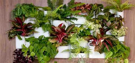 cool urbio vertical garden my desired home
