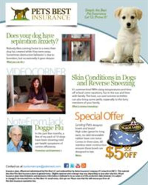 pet health insurance provider pets  insurance launches